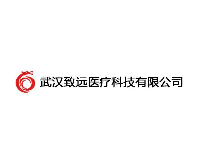 武汉致远医疗科技有限公司